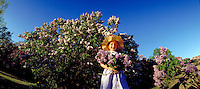 Girl with Lilacs in Highland Park. Rochester New York United States Highland Park.