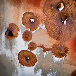 Rusting car body with bullet holes, Gabbs Valley Range, Nev.