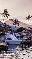 View of the docked boats in Lahaina Harbor, Maui.