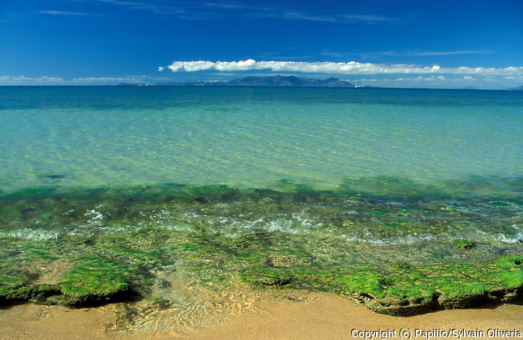 Magnetic Island, Australia, National Park, beach, coast,  World Heritage listed Great Barrier Reef Marine Park.