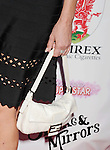 BEVERLY HILLS, CA- SEPTEMBER 13: Actress Sharon Stone (handbag, ring detail) at the Brent Shapiro Foundation for Alcohol and Drug Awareness' annual 'Summer Spectacular Under The Stars' at a private residence on September 13, 2014 in Beverly Hills, California.