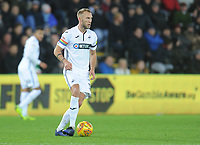 Swansea City's Mike van der Hoorn<br /> <br /> Photographer Kevin Barnes/CameraSport<br /> <br /> The EFL Sky Bet Championship - Swansea City v West Bromwich Albion - Wednesday 28th November 2018 - Liberty Stadium - Swansea<br /> <br /> World Copyright &copy; 2018 CameraSport. All rights reserved. 43 Linden Ave. Countesthorpe. Leicester. England. LE8 5PG - Tel: +44 (0) 116 277 4147 - admin@camerasport.com - www.camerasport.com