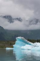 Scenic of icebergs in Bear Glacier Lagoon, Kenai Fjords National Park, southcentral, Alaska.