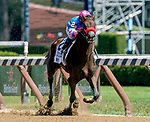 August 24, 2019 : Come Dancing #2, ridden by Javier Castellano, wins the Ketel One Ballerina Stakes during Travers Stakes Day at Saratoga Racecourse in Saratoga Springs, New York. Scott Serio/Eclipse Sportswire/CSM