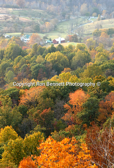 Autumn leaves Blue Ridge Mountains Sky line drive Commonwealth of Virginia, Fine Art Photography by Ron Bennett, Fine Art, Fine Art photography, Art Photography, Copyright RonBennettPhotography.com ©
