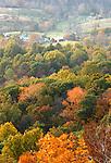 Autumn leaves Blue Ridge Mountains Sky line drive Commonwealth of Virginia, Fine Art Photography by Ron Bennett, Fine Art, Fine Art photography, Art Photography, Copyright RonBennettPhotography.com ©