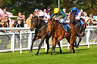 Winner of The George Smith Horseboxes British EBF Maiden Stakes  Dark Optimist (rails) ridden by John Egan and trained by David Evans  during Evening Racing at Salisbury Racecourse on 25th May 2019