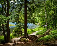 Germany (Bavaria - Bavarian Forest)