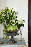 An ornate, vintage vase sits on a blue wooden surface. Hyacinth bulbs are beginning to sprout. Behind is a tall glass vase with green hydrangeas and calla liles.