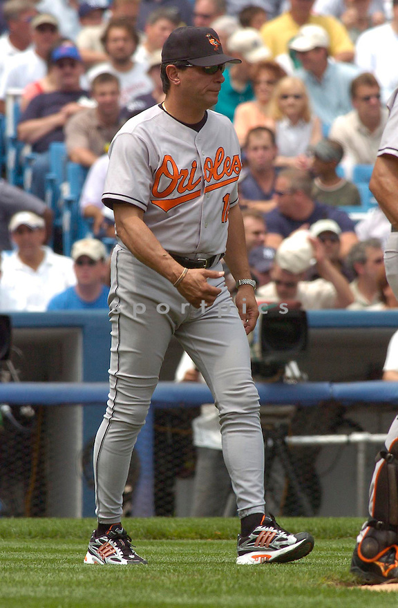 Lee Mazzilli, of the Baltimore Orioles in action against the New York Yankees on July 5, 2005...Yankees win 12-3....Chris Bernacchi / SportPics
