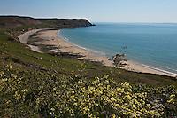 Europe/France/Basse-Normandie/50/Manche/Presqu'Ile du Cotentin/Cap de la Hague/Auderville: Baie d'Ecalgrain