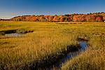 Autumn on the Webhannet River Marsh, Rachel Carson National Wildlife Refuge, Wells, ME, USA