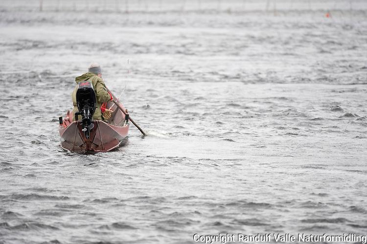Mann lander laks fra elvebåt i Tana ---- Man landing salmon in Tana