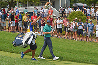 Rory McIlroy (NIR) heads down 12 during 4th round of the 100th PGA Championship at Bellerive Country Club, St. Louis, Missouri. 8/12/2018.<br /> Picture: Golffile   Ken Murray<br /> <br /> All photo usage must carry mandatory copyright credit (© Golffile   Ken Murray)