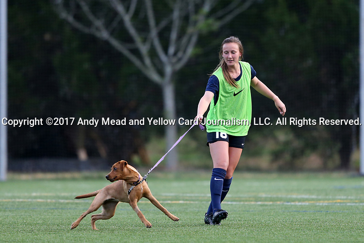 CHARLOTTE, NC - MARCH 25: Courage's Claire Wagner (18) catches a dog that had gotten loose on the field during halftime. The NWSL's North Carolina Courage played their first preseason game against the University of Tennessee Volunteers on March 25, 2017, at Queens University of Charlotte Sports Complex in Charlotte, NC. The Courage won the match 3-0.