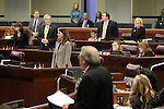 Nevada Assembly members stand up to be counted during an Assembly floor session at the Legislative Building in Carson City, Nev., on Thursday, May 21, 2015. <br /> Photo by Cathleen Allison