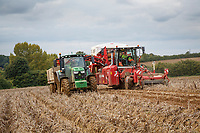 Harvesting Estima with a Grimme Varitron 220 - Suffolk, September