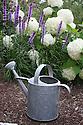 Galvanized watering can in garden