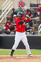 Tyler Williams (2) of the Kannapolis Intimidators at bat against the Delmarva Shorebirds at CMC-Northeast Stadium on April 17, 2013 in Kannapolis, North Carolina.  The Shorebirds defeated the Intimidators 9-4.  (Brian Westerholt/Four Seam Images)