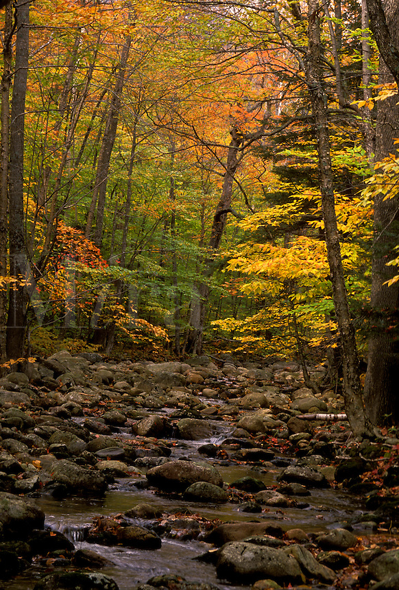 AJ1801, fall, stream, Maine, White Mountain National Forest, Stream flows over the rocks in the fall.