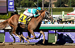November 1, 2019: British Idiom, ridden by Javier Castellano, wins the Breeders' Cup Juvenile Fillies on Breeders' Cup World Championship Friday at Santa Anita Park on November 1, 2019: in Arcadia, California. Casey Phillips/Eclipse Sportswire/CSM
