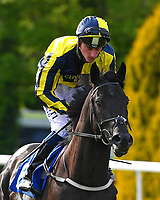 Go Roo ridden by Adam Kirby goes down to the start of The Penang Turf Club Malaysia Handicap (Class 5)   during Afternoon Racing at Salisbury Racecourse on 17th May 2018