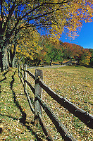 Fall colors looms over a fenceline at Ashlawn Highlands.