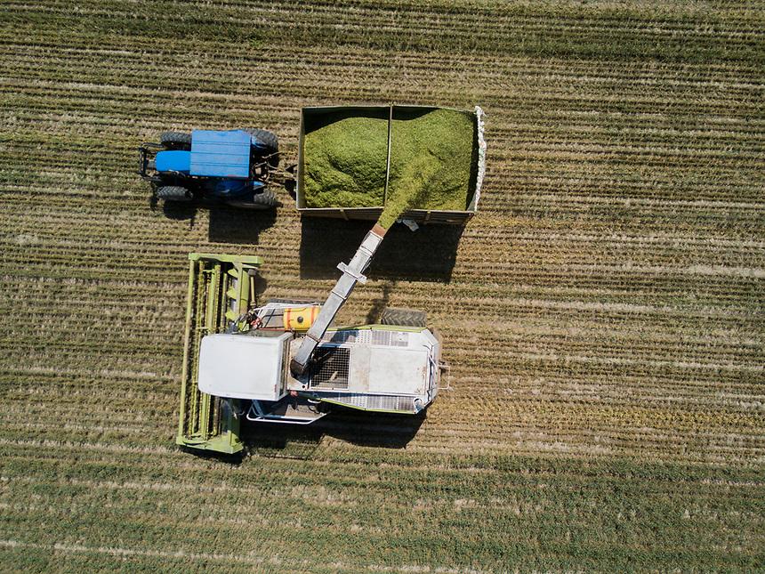 Combine harvester harvesting. Rancho Santa Clara, Huamantla, Tlaxcala, Mexico