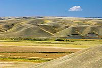 Prairie landscape<br /> Cypress Hills<br /> Saskatchewan<br /> Canada
