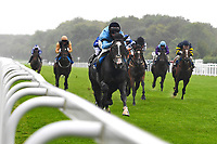 Winner of The British EBF Molson Coors Novice Stakes Div 1 Ascension ridden by Jack mitchell and trained by Roger Varian  during Horse Racing at Salisbury Racecourse on 14th August 2019