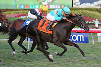 HALLANDALE BEACH, FL - FEBRUARY 04:  Rymska (FR) #7, with jockey Joel Rosario on board, wins the Sweetest Chant Stakes G2 at Gulfstream Park on February 04, 2017 in Hallandale Beach, Florida. (Photo by Liz Lamont/Eclipse Sportswire/Getty Images)