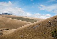 Antisana Ecological Reserve, Ecuador