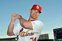Mar 01, 2010; Jupiter, FL, USA; St. Louis Cardinals outfielder Tyler Henley (74) during  photoday at Roger Dean Stadium. Mandatory Credit: Tomasso De Rosa/ Four Seam Images