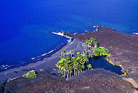 Aerial shot of an isolated stretch of barren lava coastline with a few palm trees near Kona Village on the Big Island of Hawaii.