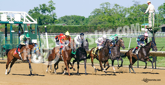Camille Claudel winning at Delaware Park on 5/23/15