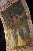 Europe/France/Midi-Pyrénées/09/Ariège/Couserans/Audressein: Eglise - Fresques du porche XVème