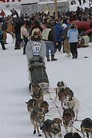 Ed Iten Willow restart Iditarod 2008.