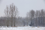 Europa, DEU, Deutschland, Nordrhein Westfalen, NRW, Rheinland, Niederrhein, Straelen, Wald, Waldrand, Winter, Schnee, Baeume, Kategorien und Themen, Natur, Umwelt, Landschaft, Jahreszeiten, Stimmungen, Landschaftsfotografie, Landschaften, Landschaftsphoto, Landschaftsphotographie, Wetter, Wetterelemente, Wetterlage, Wetterkunde, Witterung, Witterungsbedingungen, Wettererscheinungen, Meteorologie, Wettervorhersage....[Fuer die Nutzung gelten die jeweils gueltigen Allgemeinen Liefer-und Geschaeftsbedingungen. Nutzung nur gegen Verwendungsmeldung und Nachweis. Download der AGB unter http://www.image-box.com oder werden auf Anfrage zugesendet. Freigabe ist vorher erforderlich. Jede Nutzung des Fotos ist honorarpflichtig gemaess derzeit gueltiger MFM Liste - Kontakt, Uwe Schmid-Fotografie, Duisburg, Tel. (+49).2065.677997, ..archiv@image-box.com, www.image-box.com]