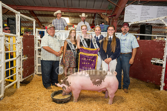 75th Amador County Fair, Plymouth, Calif.<br /> <br /> Exhibitors, champions, bidders and animals for auction at the 49th Junior Livestock Auction