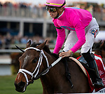 HALLANDALE BEACH, FL: #1 Zulu Alpha sneaks up the rail to win the Grade I Pegasus World Cup Turf at Gulfstream Park in Hallandale Beach, Florida on January 25