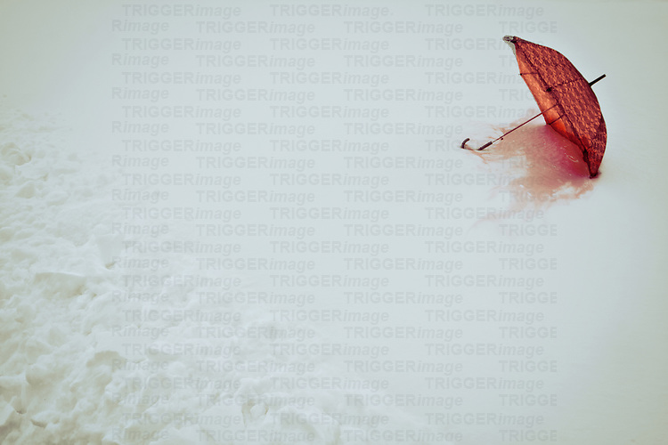 Photograph of red umbrella lying in the snow, melting.
