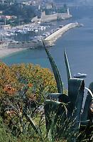 Europe/France/Provence-Alpes-Côtes d'Azur/06/Alpes-Maritimes/Villefranche-sur-Mer : La flore et le port
