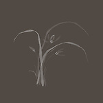 Elegant Japanese Zen ink painting of Wild orchid flowers and leaves design illustration floral artwork on warm gray background