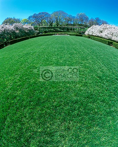 GREEN LAWN CONSERVATORY GARDEN CENTRAL PARK MANHATTAN NEW YORK CITY USA