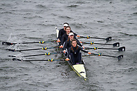 Crew: 245  Royal Shrewsbury Sch  Event: Girls CHAMP quads<br /> <br /> Schools' Head of the River 2017<br /> <br /> To purchase this photo, or to see pricing information for Prints and Downloads, click the blue 'Add to Cart' button at the top-right of the page.