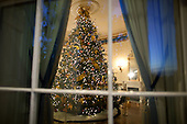 Washington, DC - December 1, 2009 -- The official White House Christmas Tree, an 18 1/2 foot Douglas Fir, is seen through a window in the Blue Room of the White House, Tuesday, December 1, 2009. .Mandatory Credit: Chuck Kennedy - White House via CNP