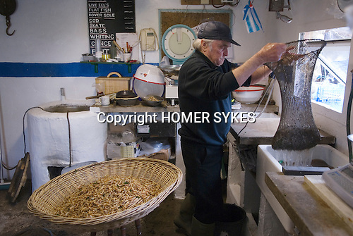 The Last Mudhorse Fishermen. UK 2008. The Sellick family, Stolford, Bridgewater Bay, Somerset. Brendan 74yrs washes brown shrips before cooking them.
