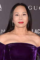 LOS ANGELES, CA - NOVEMBER 04: Eva Chow at the 2017 LACMA Art + Film Gala Honoring Mark Bradford And George Lucas at LACMA on November 4, 2017 in Los Angeles, California. Credit: David Edwards/MediaPunch /NortePhoto.com