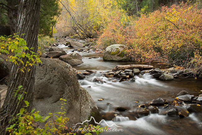 Idaho, South central, Twin Falls, rock Creek.  Rock Creek in autumn.
