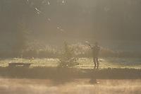 Europe/France/Normandie/Basse-Normandie/61/Orne/Gémapes : Le moulin de Gémapes - Ivan Iannaccone à la pêche à la truite à la mouche et au fouet dans la brume matinale